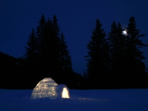 2 jour trappeur et igloo